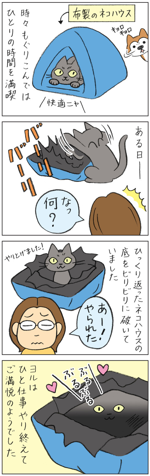 動物18-0154