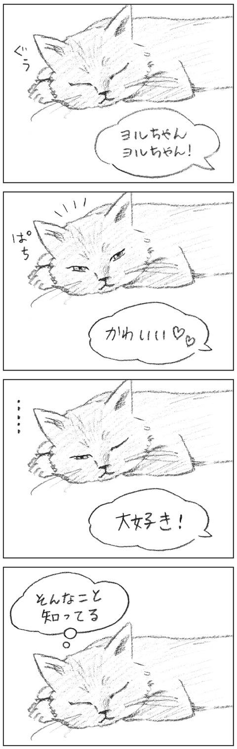 動物18-bangai001