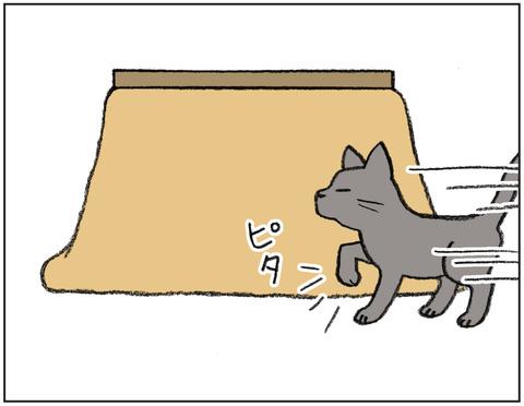 動物00446