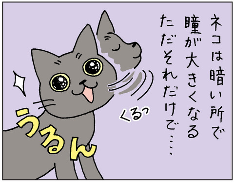 2016-0111