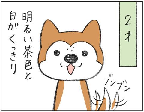 動物00484