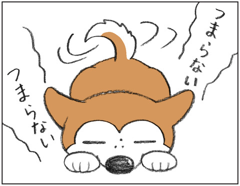 動物00468