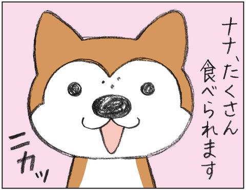 動物00497