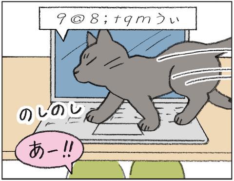 動物00459