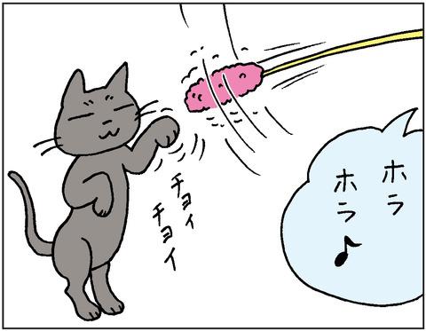 2016-0064
