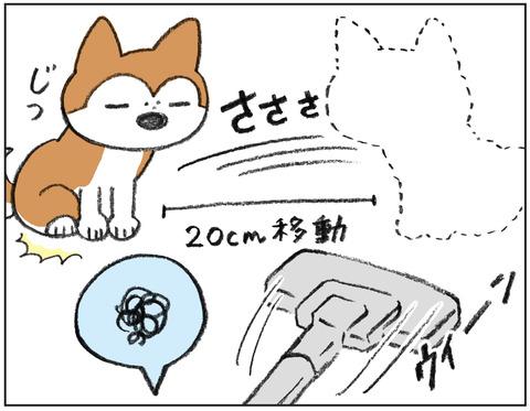 動物00438