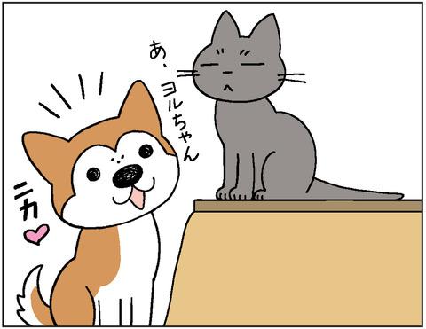 動物00423