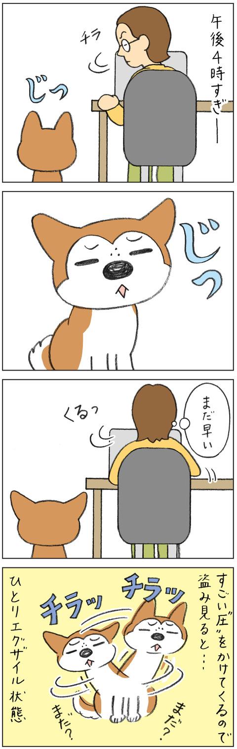動物19-0162