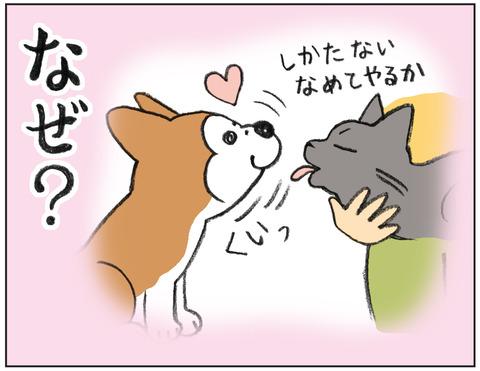 動物00482