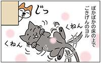 動物チーム22話ss