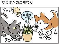 動物チーム47話-ss
