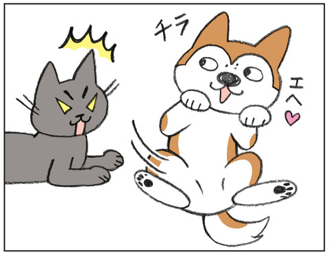 動物00523