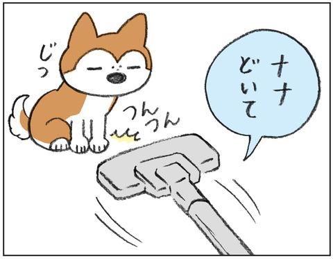 動物00439