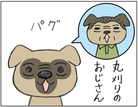 動物00510