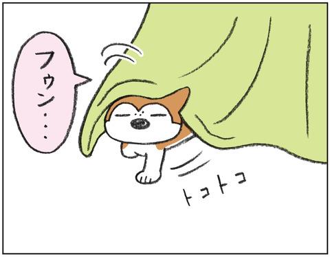 動物00455