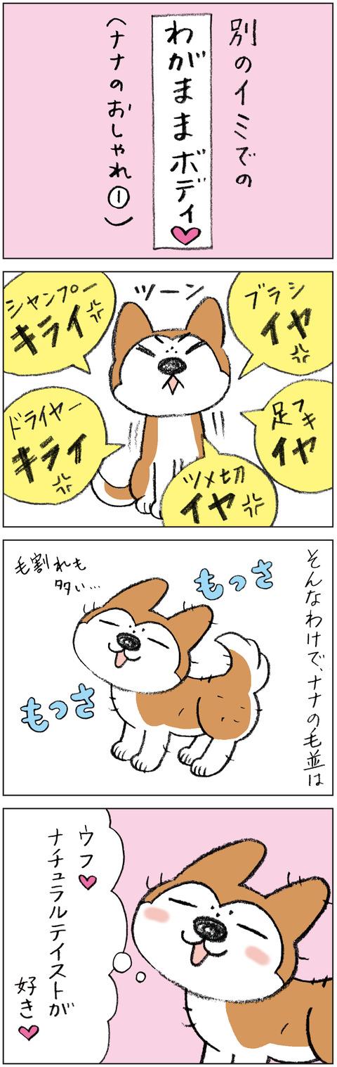 動物19-0166
