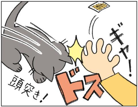 動物00514