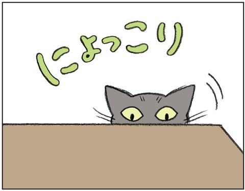 動物00430