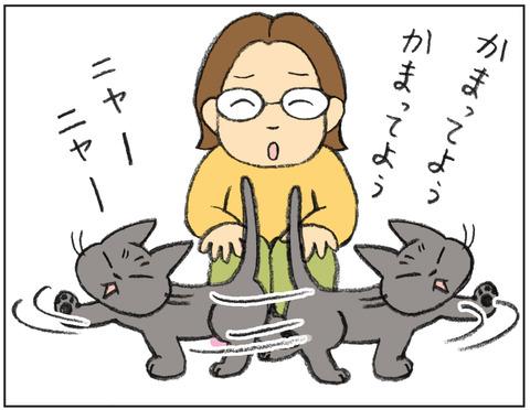 動物00475