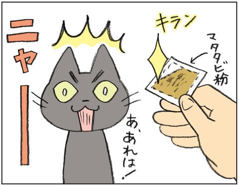 動物00513