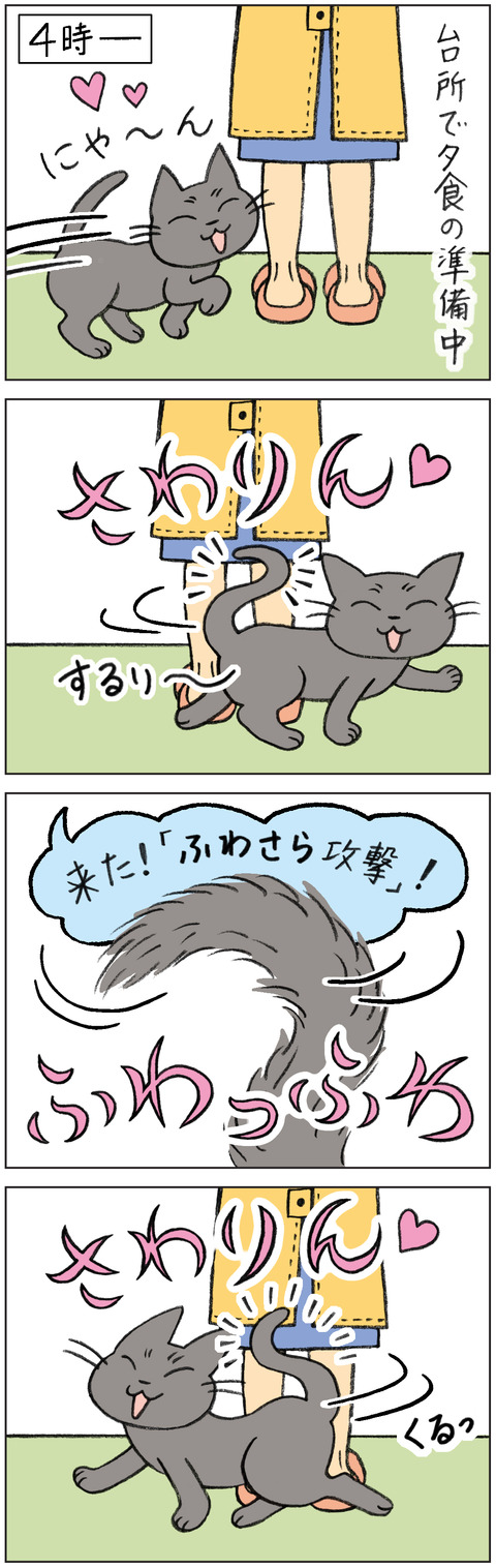 動物18-0147-A