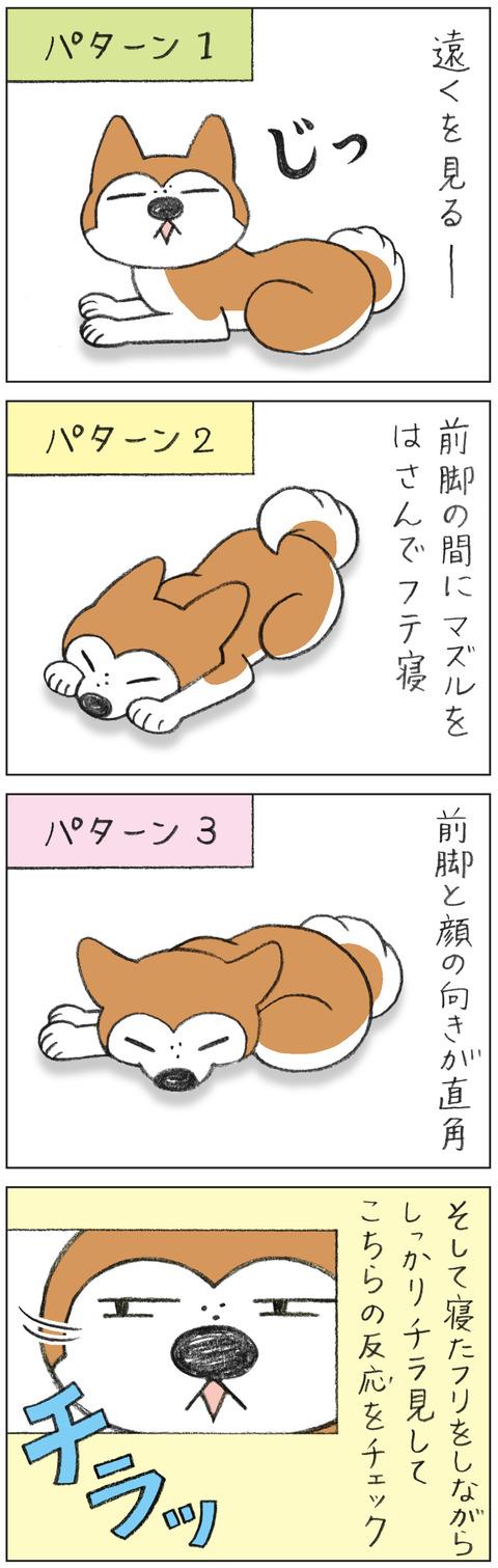 動物18-0157