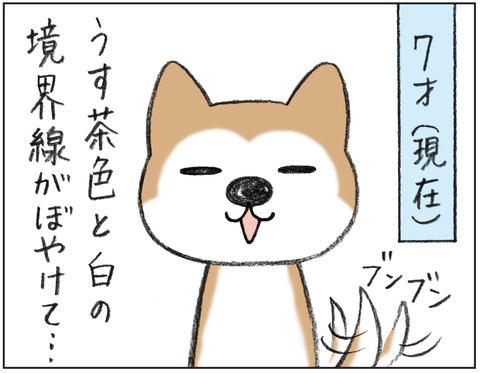 動物00485
