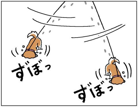 動物00415