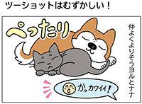 動物チーム46話-ss