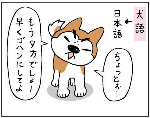 2017-00377