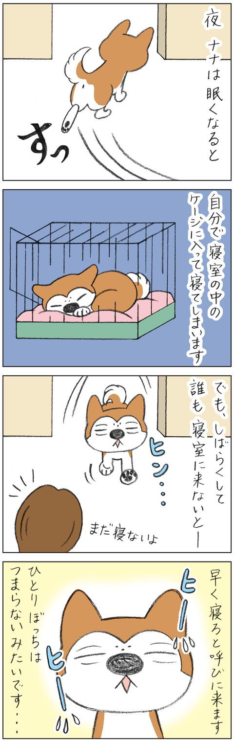 動物19-0158