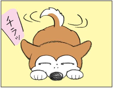 動物00470