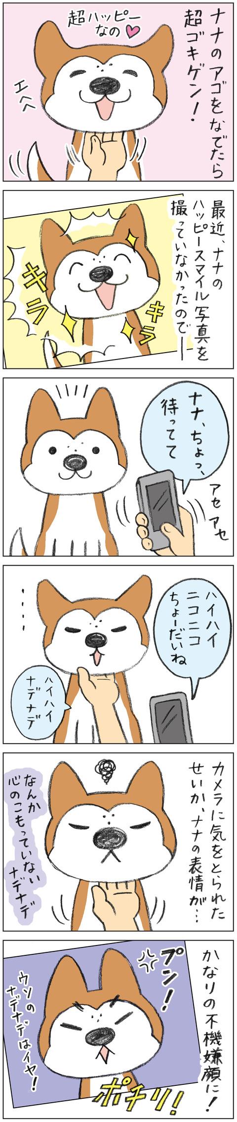 動物18-0146