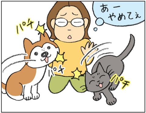動物00474