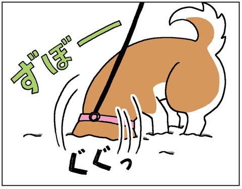 動物00414