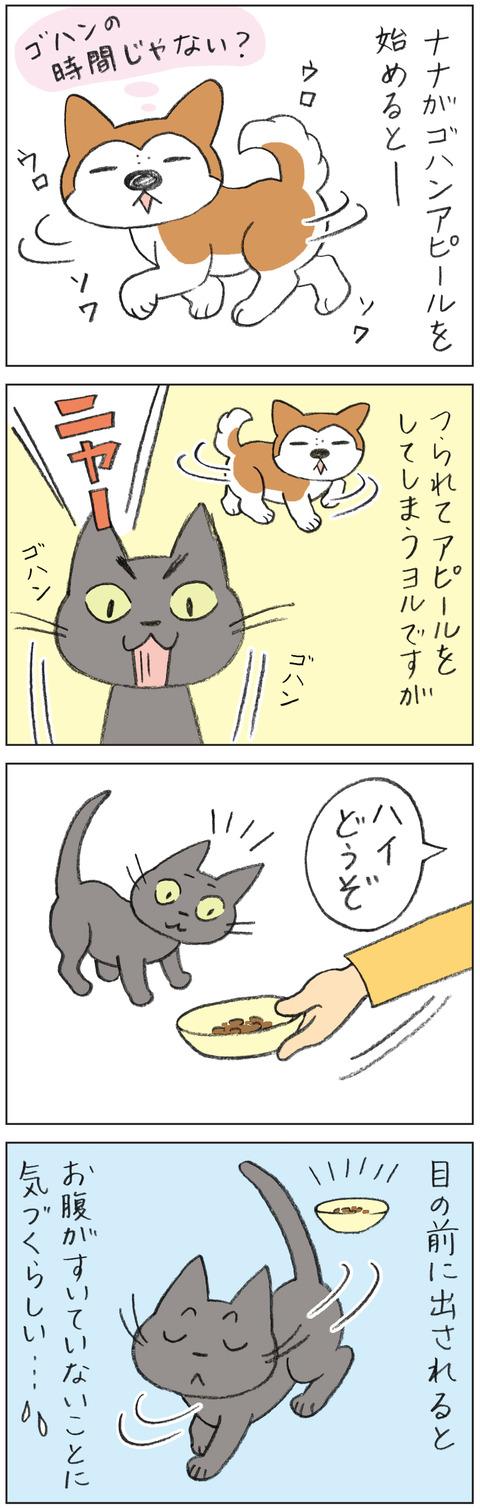 動物19-0163
