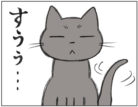 動物00434