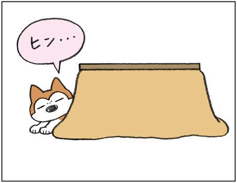 動物00454
