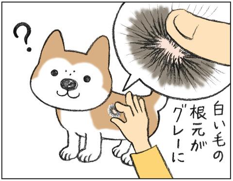 動物00486