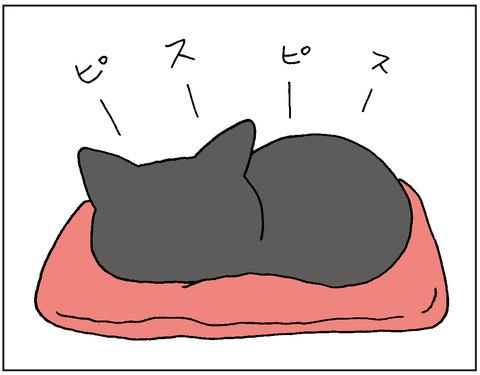 2016-00146
