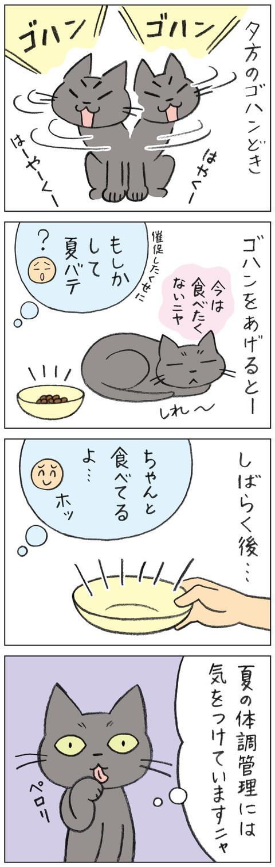 動物18-0144