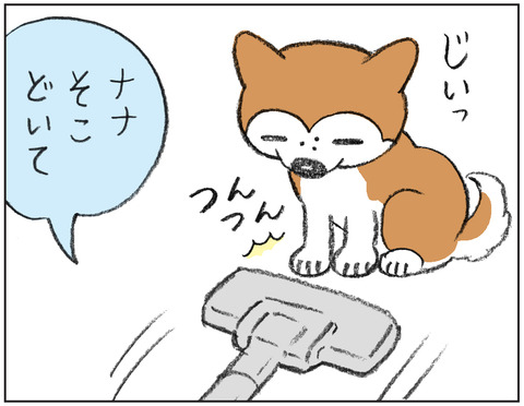 動物00437