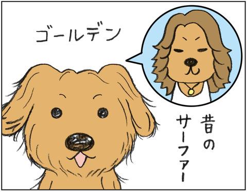 動物00511