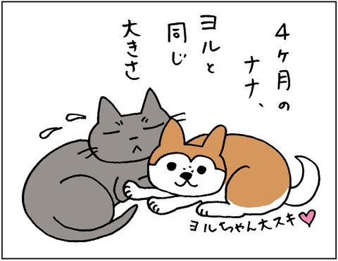 2016-0017