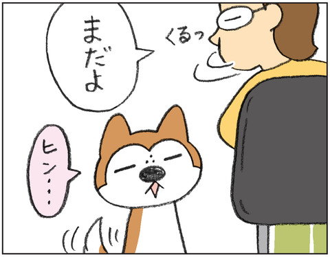動物00453