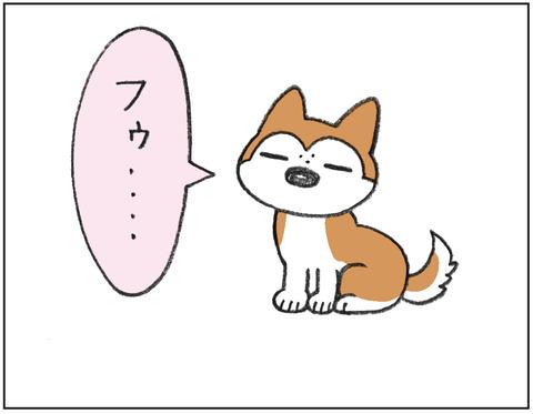 動物00457