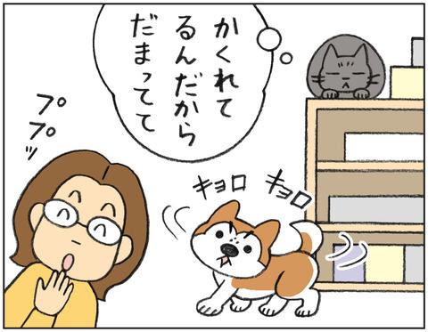 動物00548