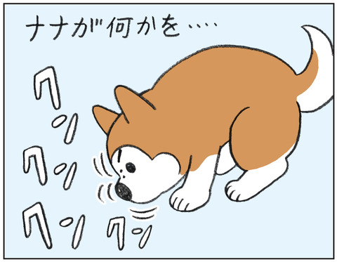動物00545