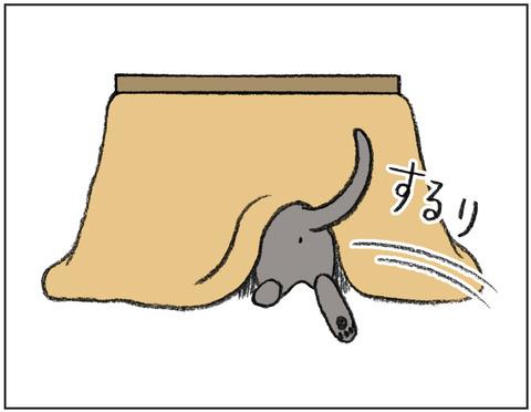 動物00447