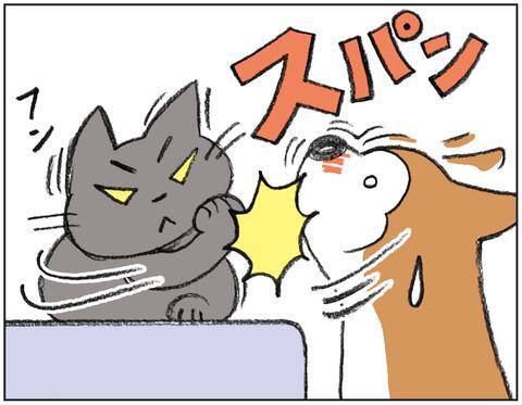 動物00501